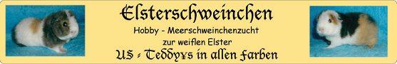 Elsterschweinchen